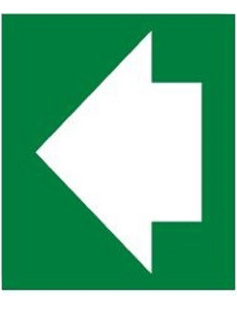 Exit Sign Arrow Left - Luminous 150mm x 150mm